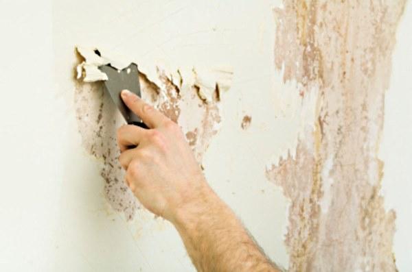 Мастер на час - подготовка стены под поклейку обоев